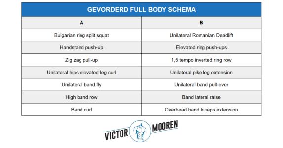 full body schema gevorderden