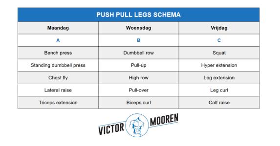 push pull legs schema voorbeeld
