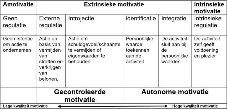Zelfdeterminatietheorie motivatie
