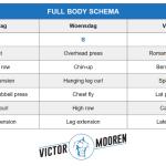 Full body schema