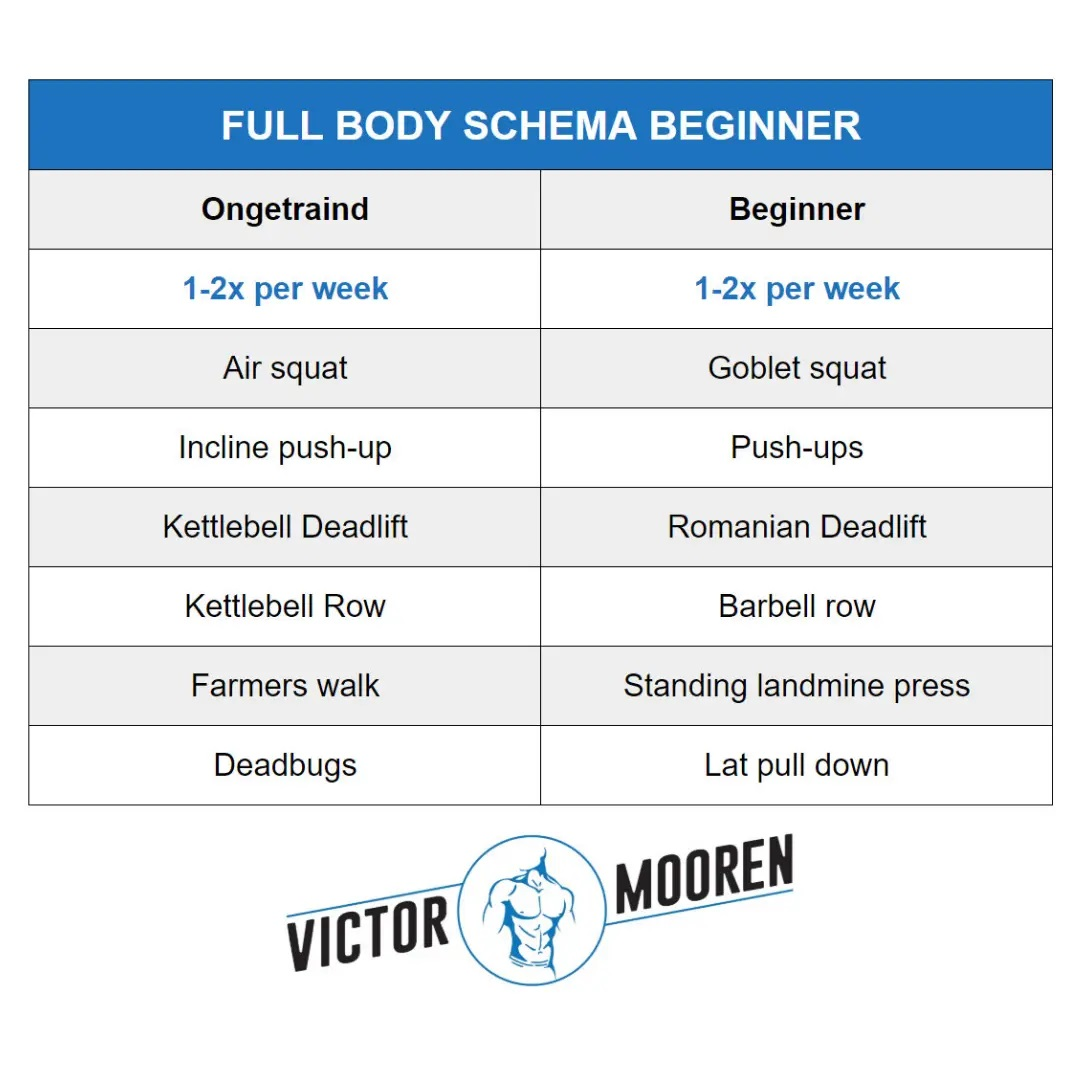 Full-body-schema-beginner