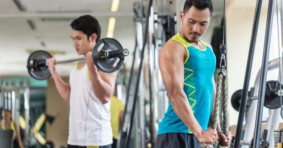 welke spiergroepen kun je het beste samen trainen