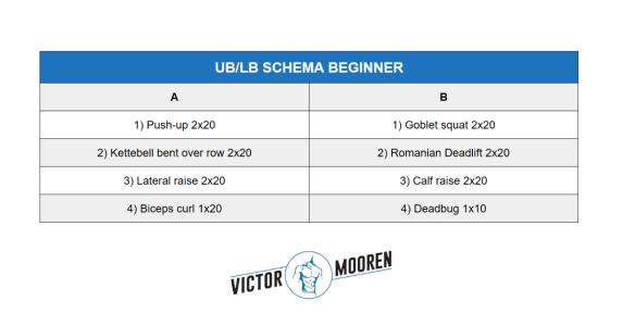 beginners krachttraining schema UB LB