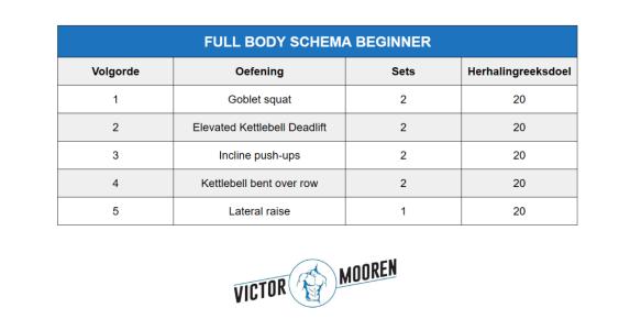 beginners krachttraining schema full body